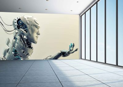 wallart.ie | action and sci-fi wall murals