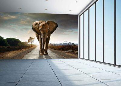wallart.ie | animal wall murals